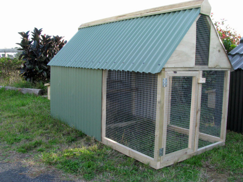 hen house double 4l Essential Considerations When Building Chicken Coops For Starters